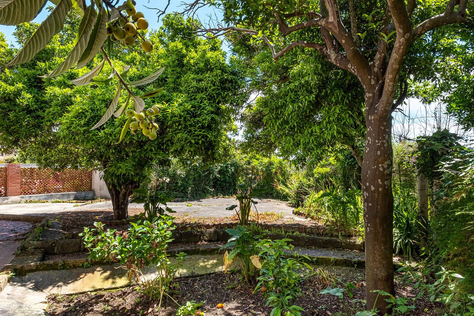Casa indipendente in Vendita a Procida: 5 locali, 300 mq - Foto 8
