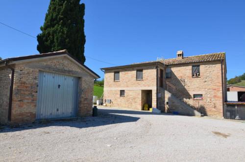 Vai alla scheda: Azienda Agricola Vendita Castignano