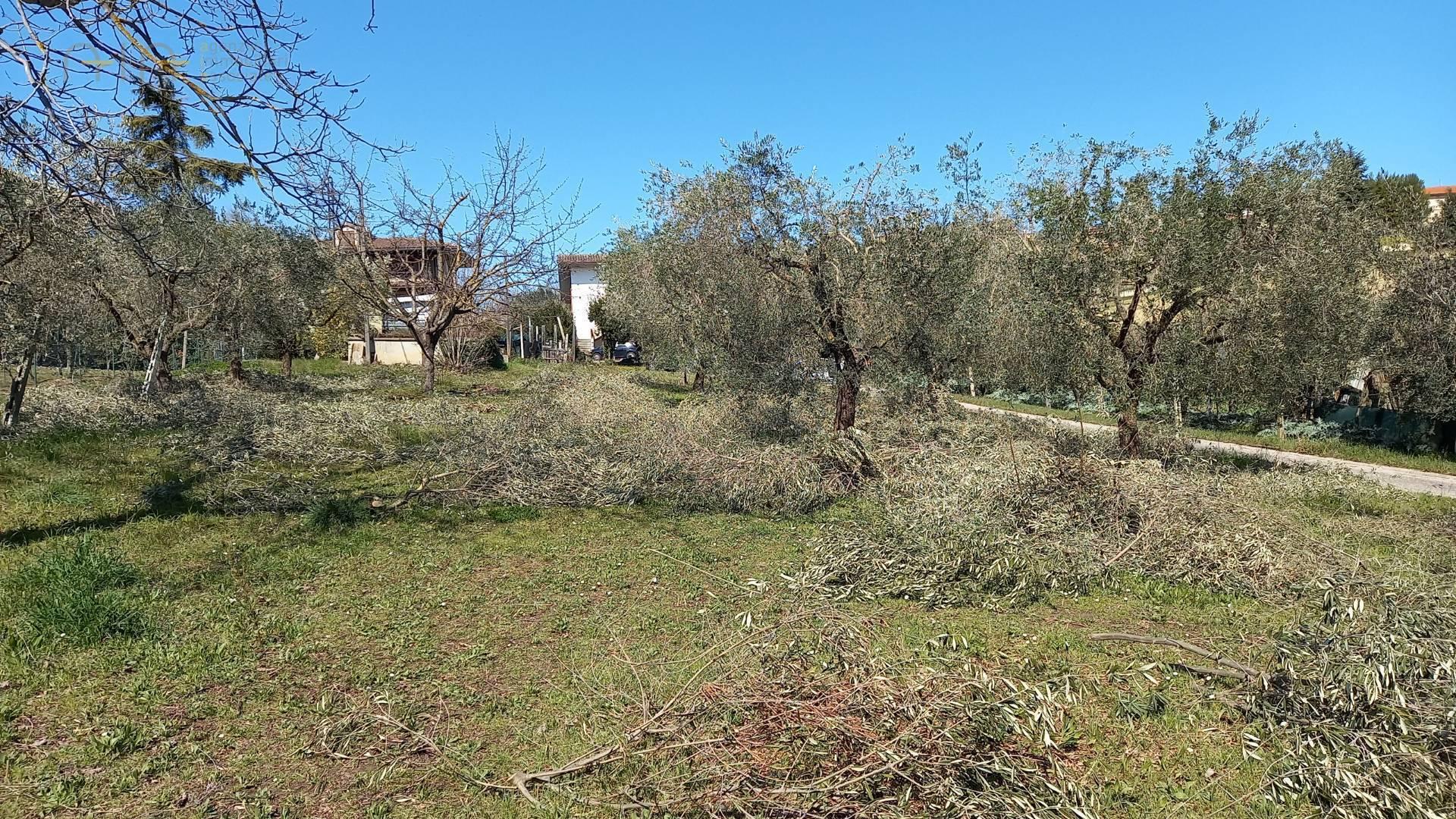 Terreno edificabile in vendita a Colli Del Tronto (AP)