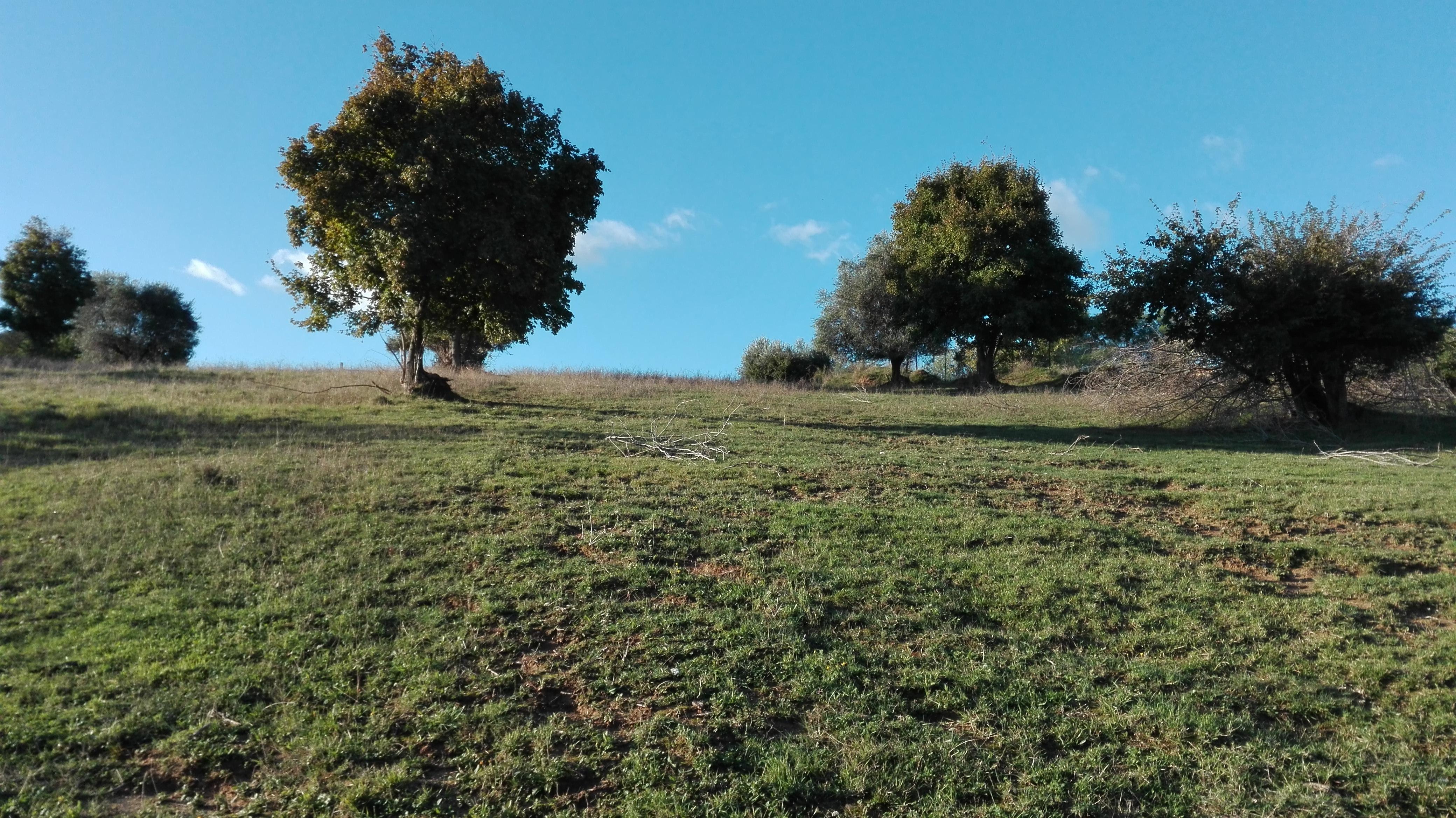 terreno agricolo con senza piccolo prefabbricato in