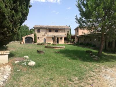 Azienda Agricola, Podere in Vendita a Loreto Aprutino