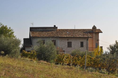 Casale Colonico in Vendita a Castorano