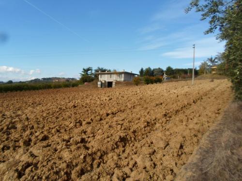 Terreno Agricolo (con / Senza Piccolo Prefabbricato) in Vendita a Monterubbiano