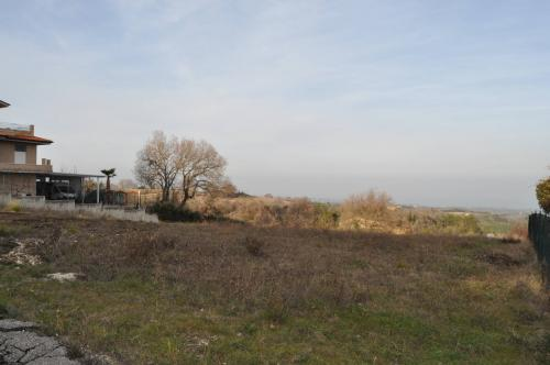 Terreno Edificabile Residenziale in Vendita a Ripatransone