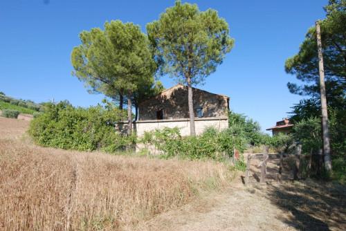 Casale Colonico in Vendita a Massignano