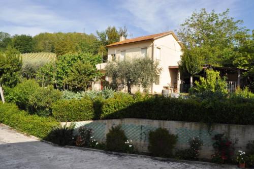 Casa in Vendita a Ripatransone