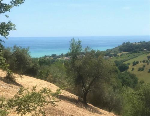 Terreno Edificabile Residenziale in Vendita a Campofilone