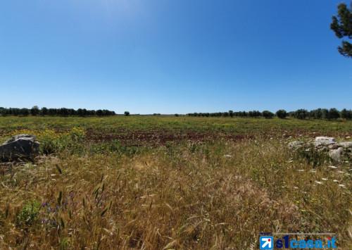 Terreno Edificabile Residenziale in Vendita a Massignano