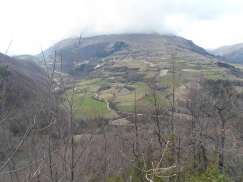 Terreno Agricolo in Vendita a Montemonaco