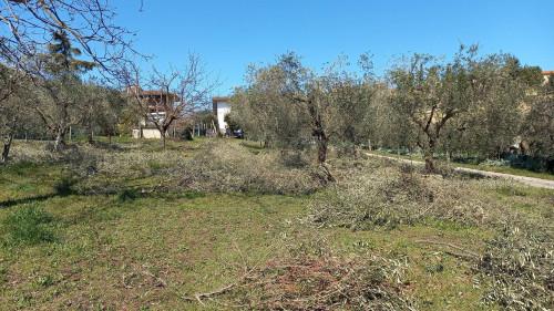 Terreno Edificabile Residenziale in Vendita a Colli del Tronto