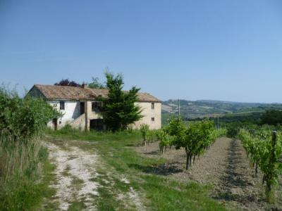 Country House for Sale to Cossignano