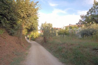 Terreno Edificabile Residenziale in Vendita a Acquaviva Picena