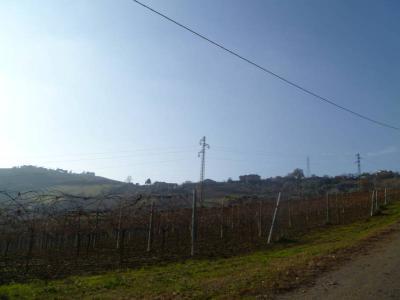 Terreno Agricolo (con / Senza Piccolo Prefabbricato) in Vendita a Spinetoli