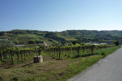 Terreno Edificabile Artigianale / Industriale in Vendita a Acquaviva Picena