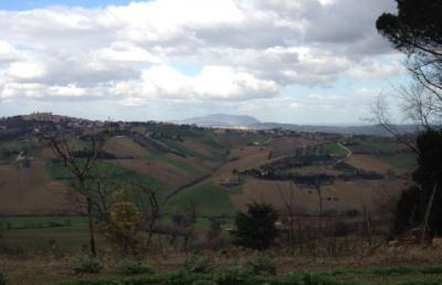 Terreno Edificabile Residenziale in Vendita a Morrovalle