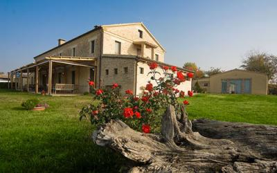 Country House for sale in Ostra