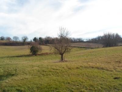 Terreno Agricolo (con / Senza Piccolo Prefabbricato) in Vendita a Amandola