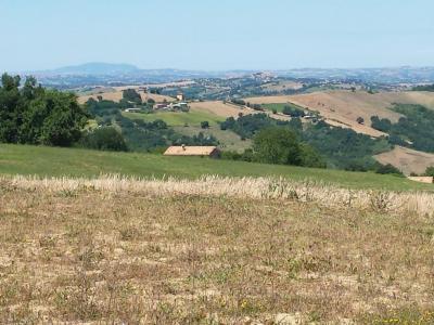 Terreno Edificabile Residenziale in Vendita a Gualdo