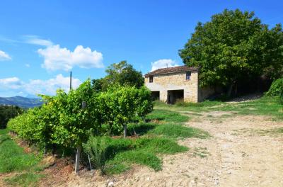 Country House for Sale to Montelparo