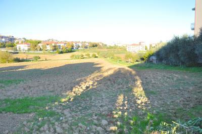 Terreno Edificabile Residenziale in Vendita a Monteprandone