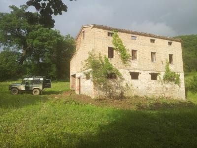 Terreno Agricolo (con / Senza Piccolo Prefabbricato) in Vendita a Venarotta