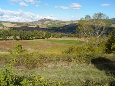 Terreno Agricolo (con / Senza Piccolo Prefabbricato) in Vendita a Force