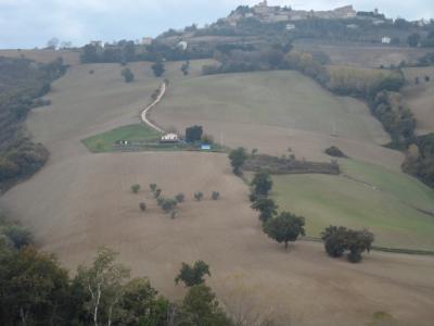 Terreno Agricolo (con / Senza Piccolo Prefabbricato) in Vendita a Santa Vittoria in Matenano