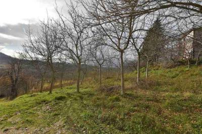 Agricultural Land to Buy in Montelparo