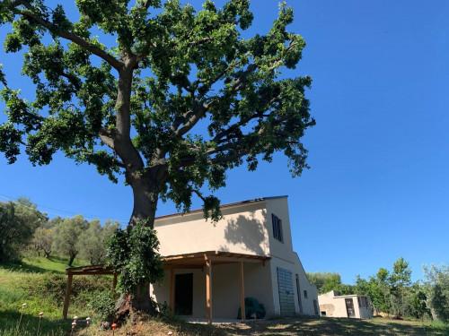 Casa cielo-terra in Vendita a Fermo