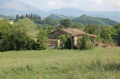 farmhouse to restore to Buy in Venarotta