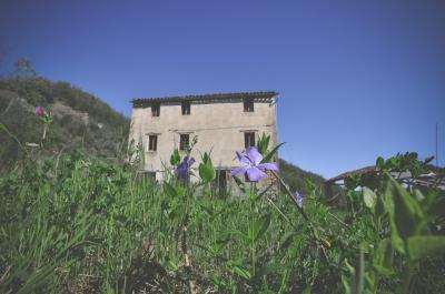 Casa colonica in Vendita a Montefortino