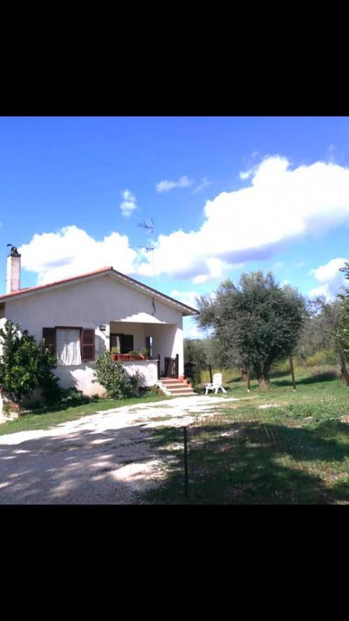 Villa in Vendita a Selci