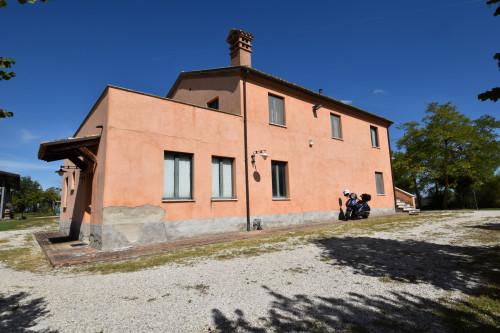 Azienda Agricola in Vendita a Ancarano