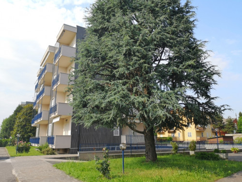 Appartamento in Vendita a Cassina de' Pecchi