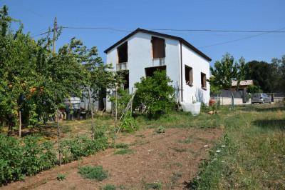 Terreno Agricolo in Vendita a Sant'Elia Fiumerapido