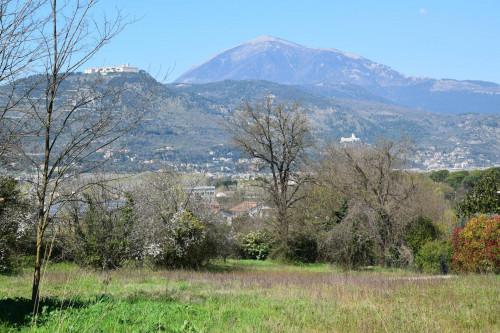 Terreno edificabile in Vendita a Cervaro