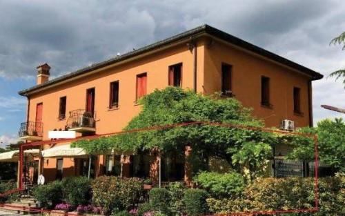 Locale commerciale in Vendita a Arquà Petrarca