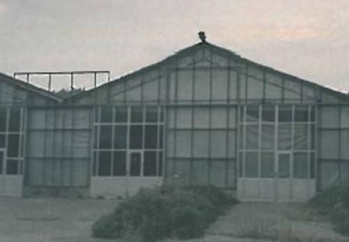 Azienda Agricola in Vendita a Sona