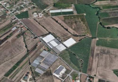 Azienda Agricola in Vendita a Aprilia