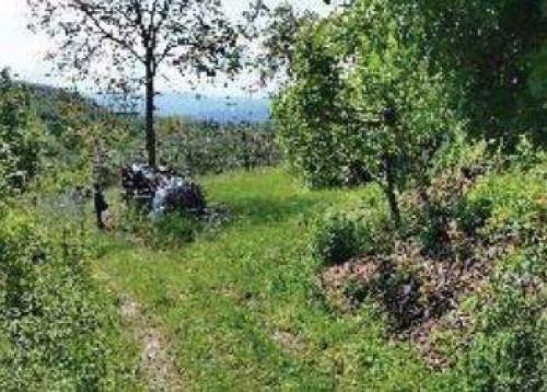 Porzione di casa in Vendita a Scarperia e San Piero