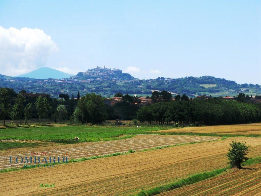 Palazzo / Stabile in vendita a Montegabbione, 9999 locali, prezzo € 4.200.000 | CambioCasa.it