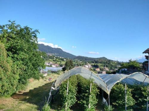Terreno edificabile in Vendita a Baselga di Pinè