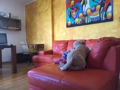 Appartamento in Vendita a Montemarciano