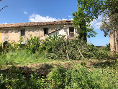 Rustico in Vendita a Montemarciano