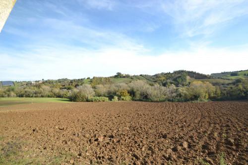 Terreno Agricolo in Vendita a Spinetoli