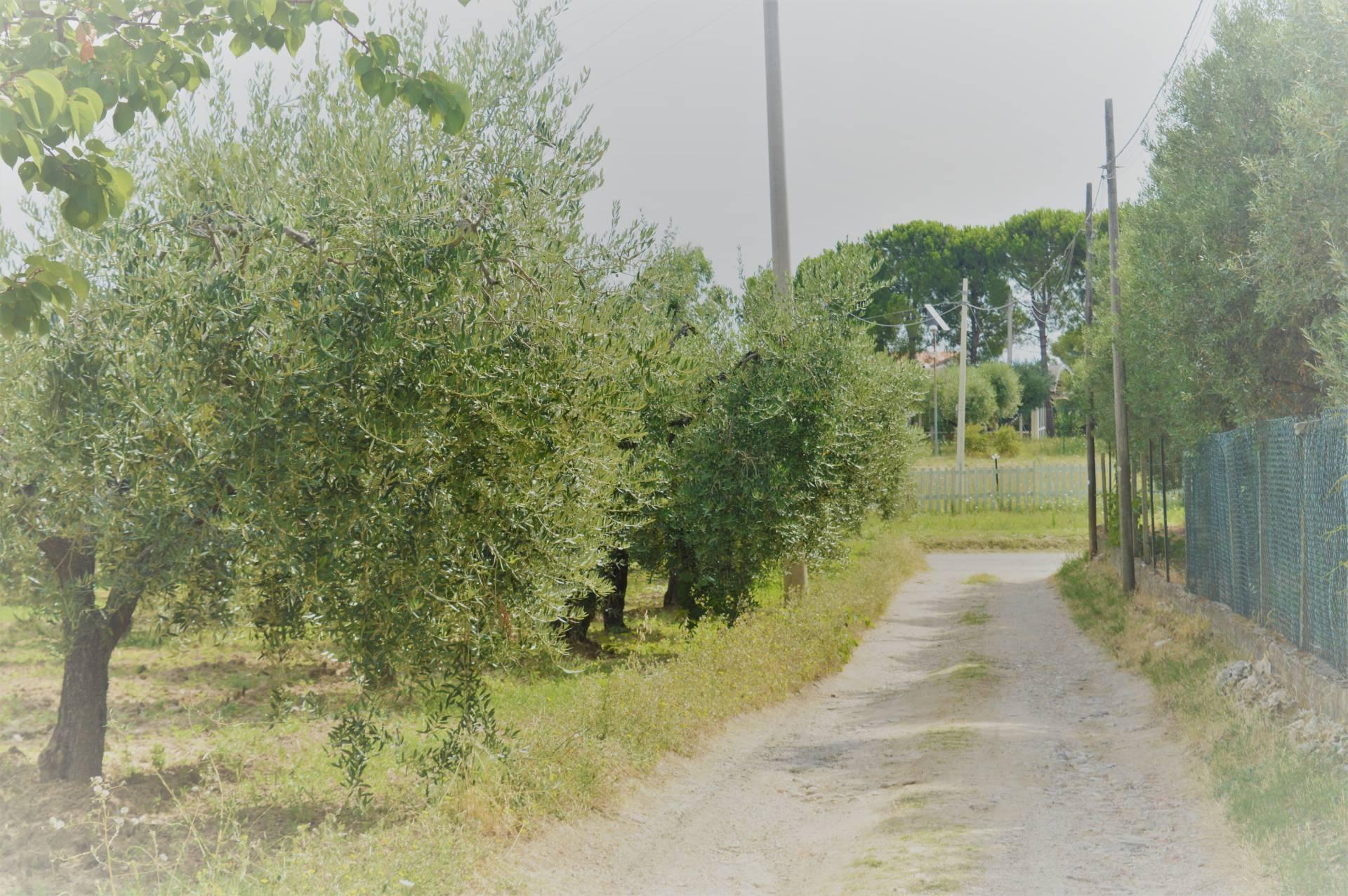 Casa singola in Vendita a Vasto Cod. 148